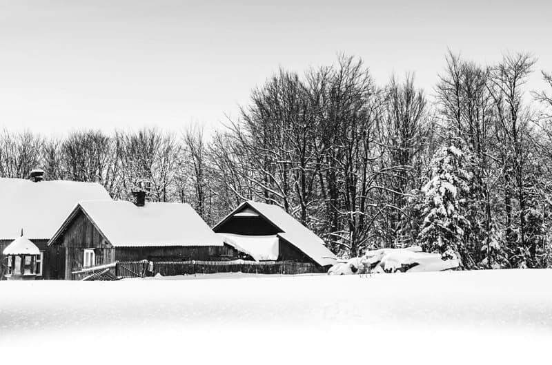 road-back_original_web2_snow2